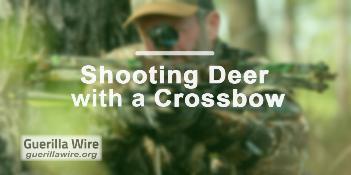 Shooting Deer with a Crossbow